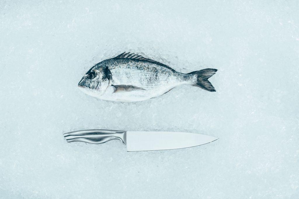 Knife For Filleting Fish